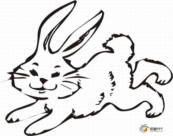 两只兔子简笔画图片大全可爱ppt