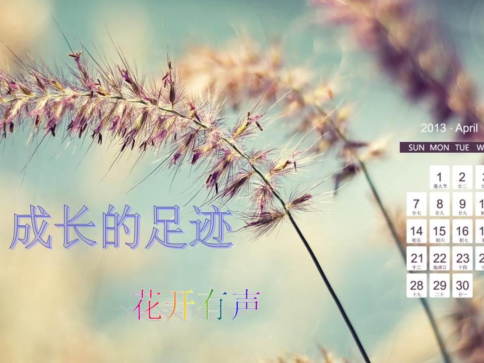 武汉科技大学第二届 新锐杯 ppt设计制作大赛 成长的足迹